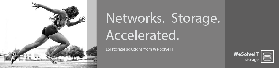 LSI-data-storage-solutions